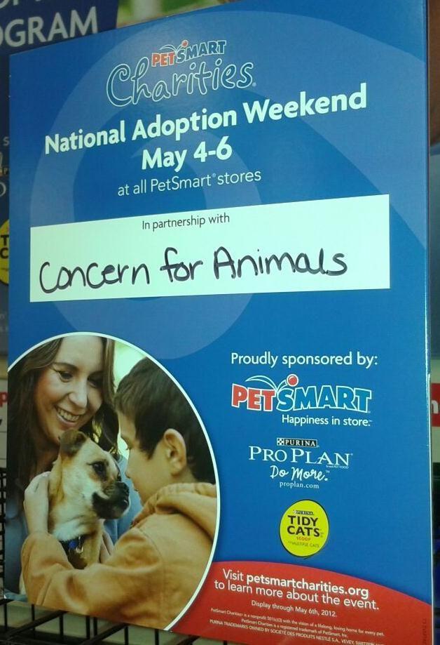 Petsmart Pet Emergency Pets For Sale Food Animals