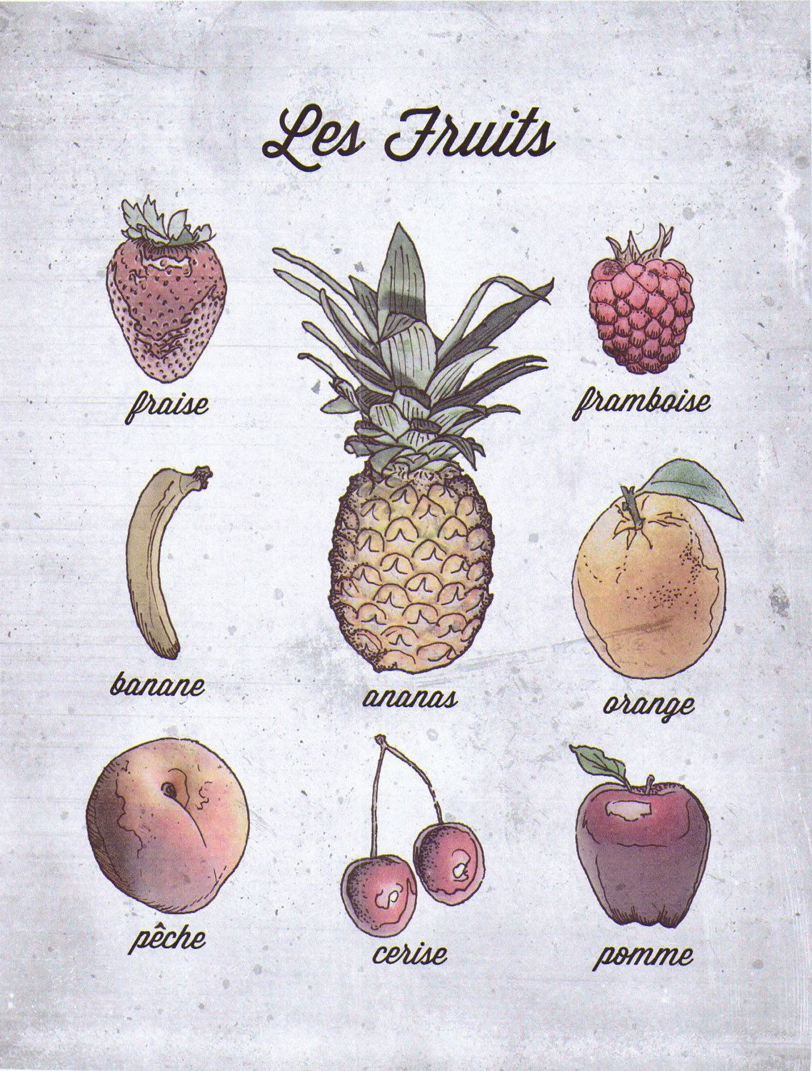 French Language Food Poster, Fruits, Les Fruits. 35.00