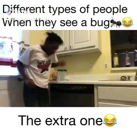 New Funny Videos  Which one are u?? 6