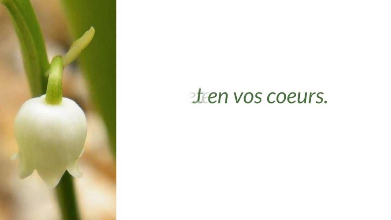 Parfum de muguet - une vidéo Sandra Dulier
