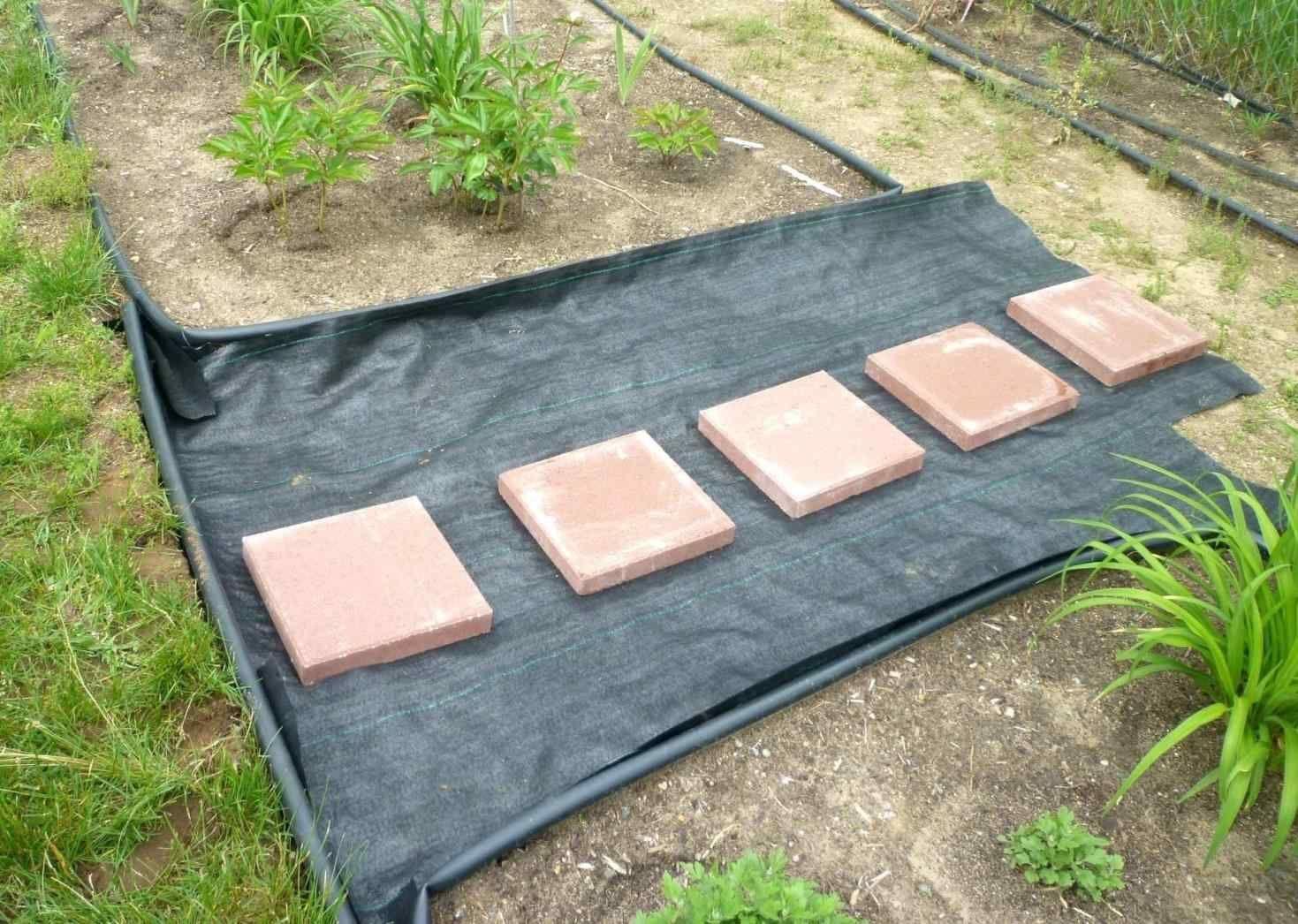 20 Gorgeous Stone Stepping Stones Ideas For Garden Paths Garden Stepping Stones Garden Paths Garden Stones
