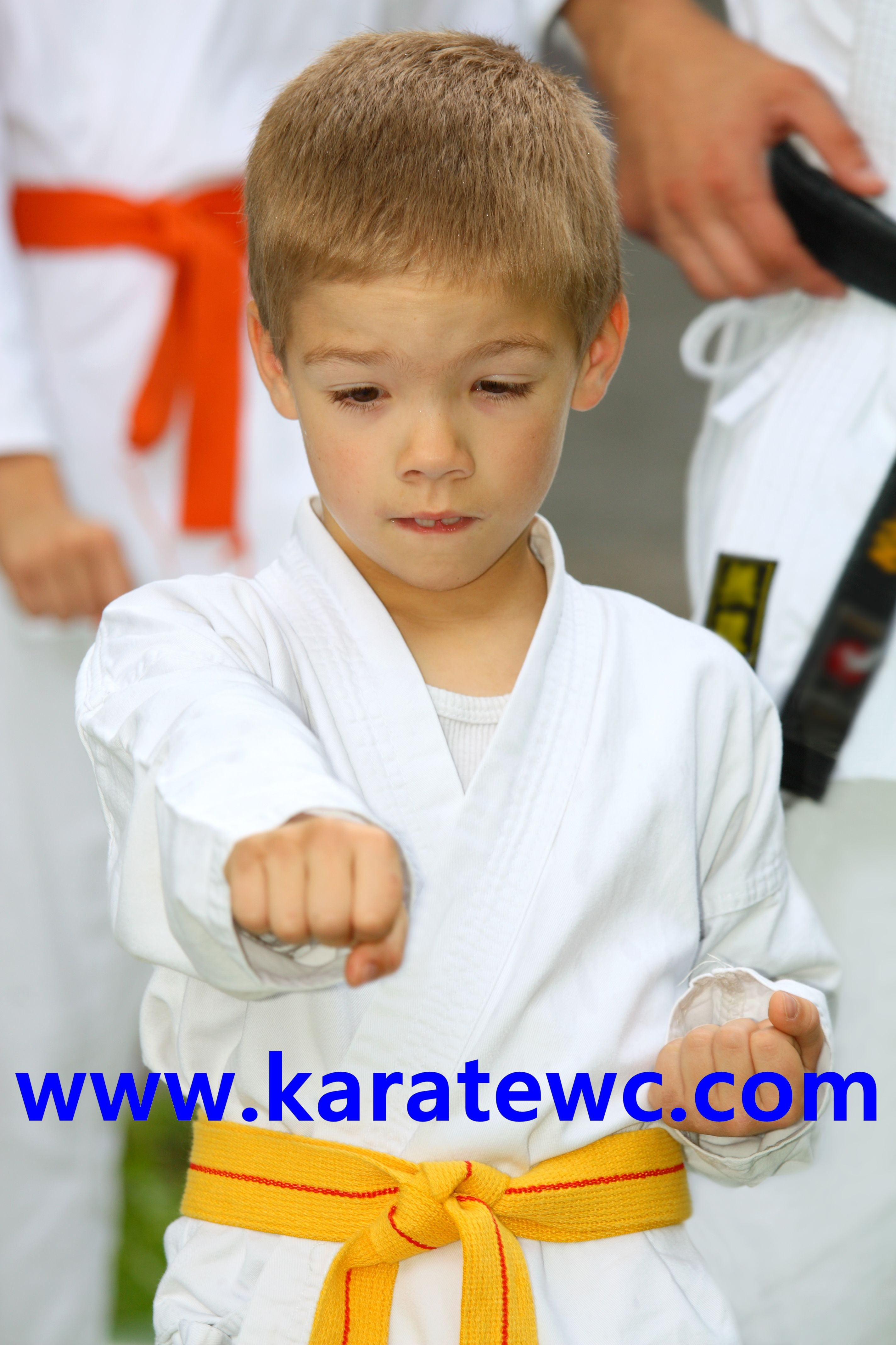 Karate Is For Everyone It Is For Male Female Young And
