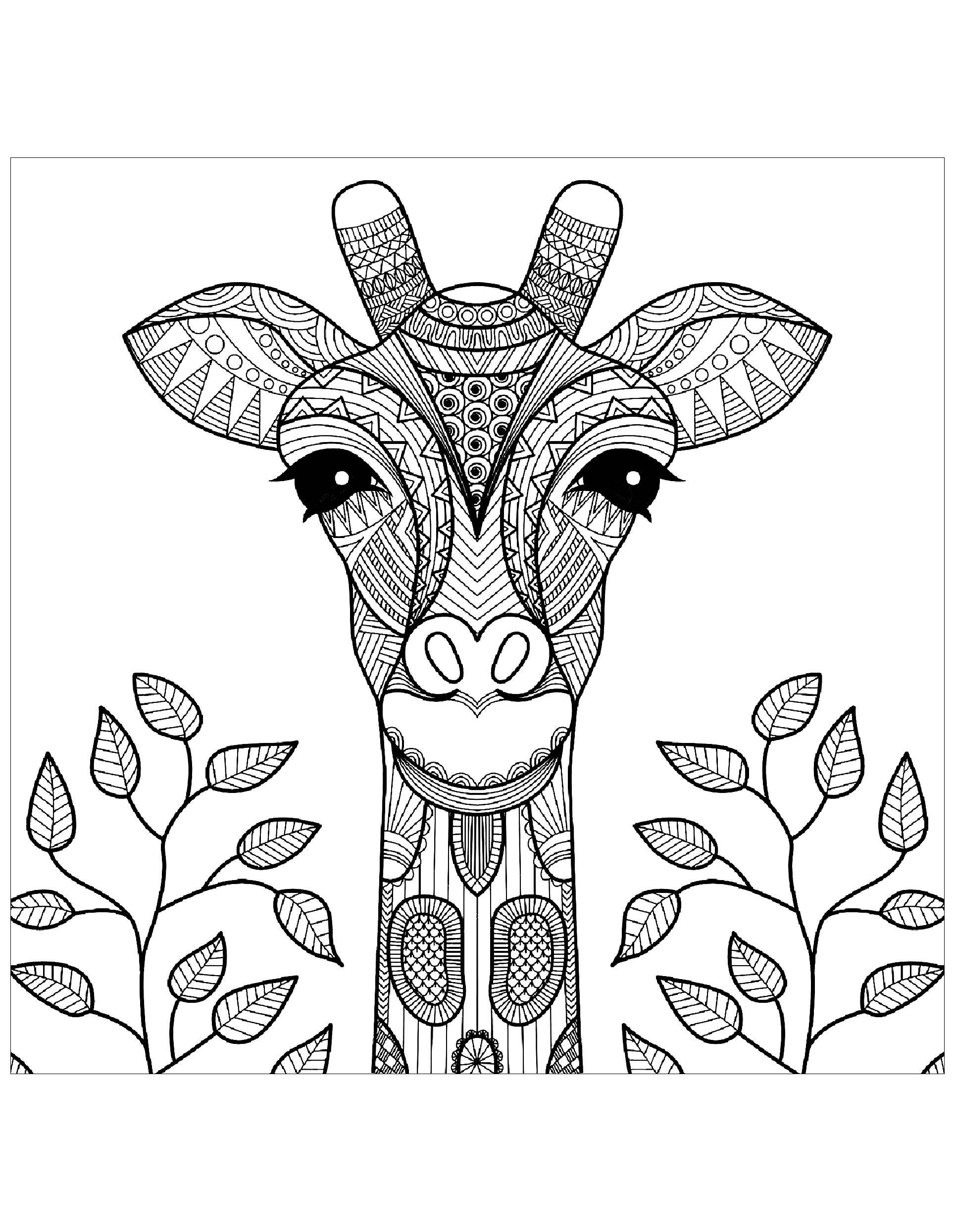 Giraffe Head With Leaves Giraffe Head With Leaves From Th Giraffe Coloring Pages Animal Coloring Books Coloring Books