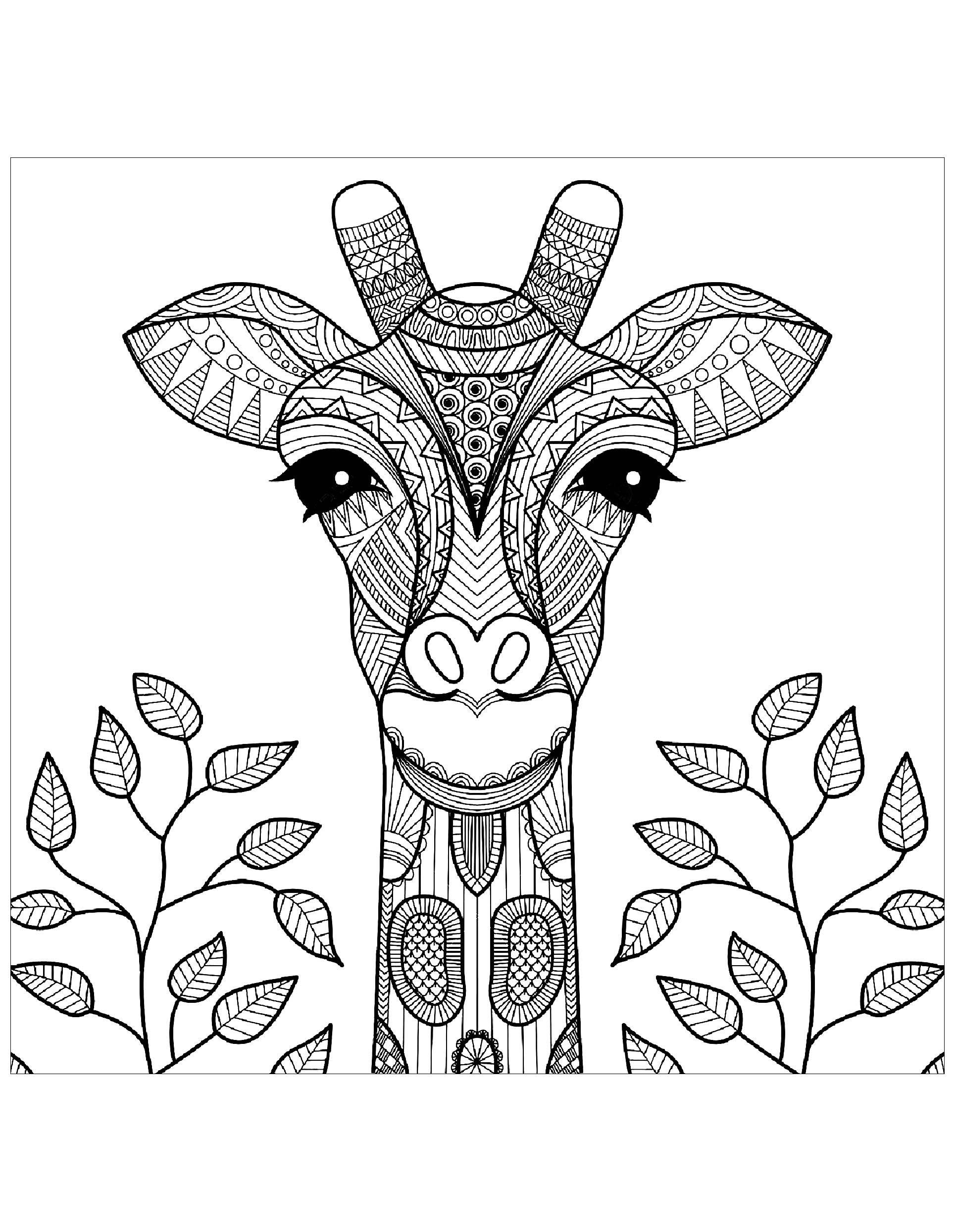 Giraffe Head With Leaves Giraffes Coloring Pages For Adults Justcolor Giraffe Coloring Pages Animal Coloring Books Coloring Books