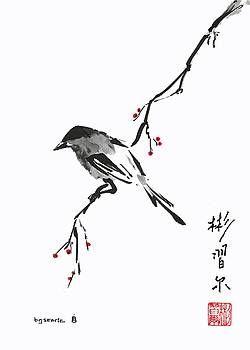 Bill Searle Artwork Collection: Birds
