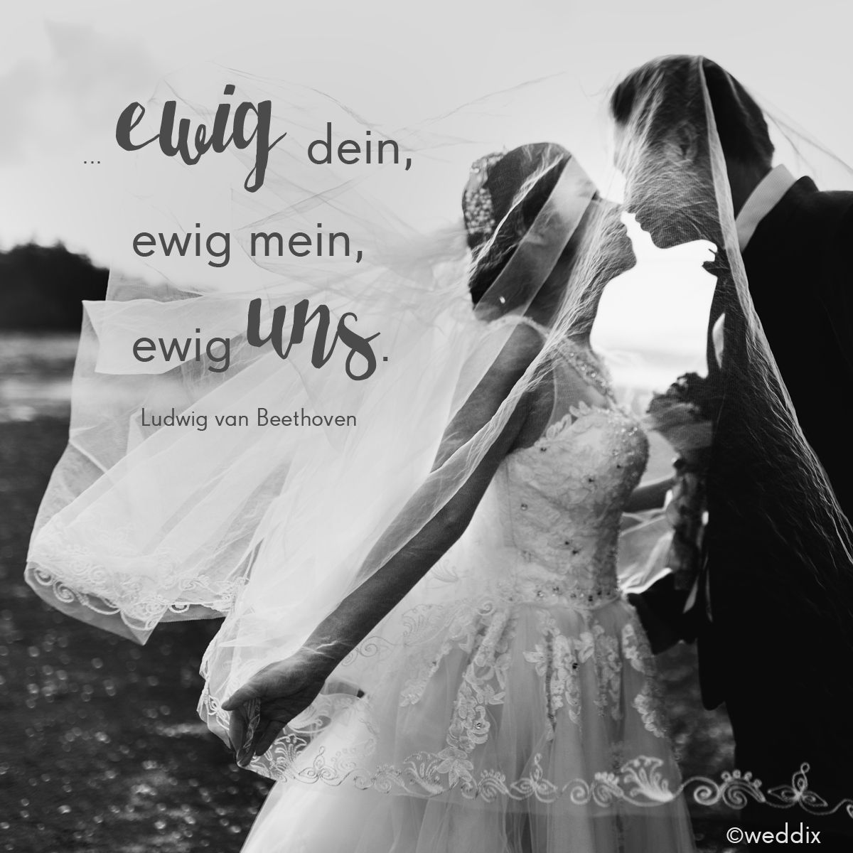 Zitate Zur Hochzeit Liebesspruche Wedding Bride Und Wedding Tips