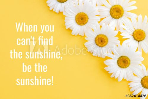 Daisies close-up and motivational quote on a yellow background. The concept of positive thinking.