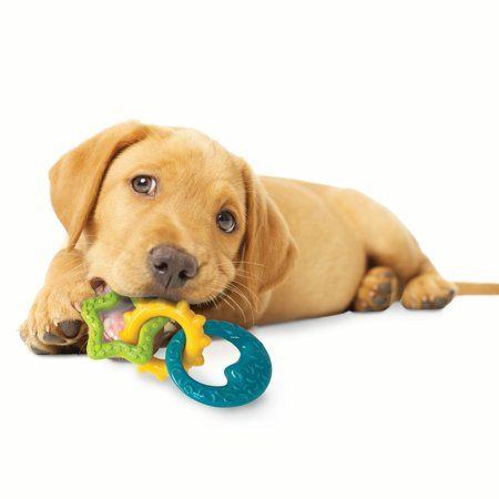 Pets Puppy Chew Toys Puppy Chewing Dog Chews