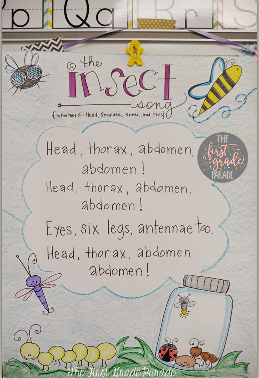The Insect Song