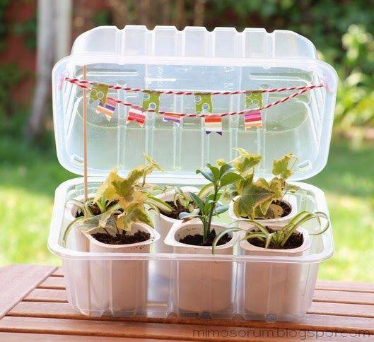 Tutorial para hacer un mini invernadero en casa con for Como establecer un vivero