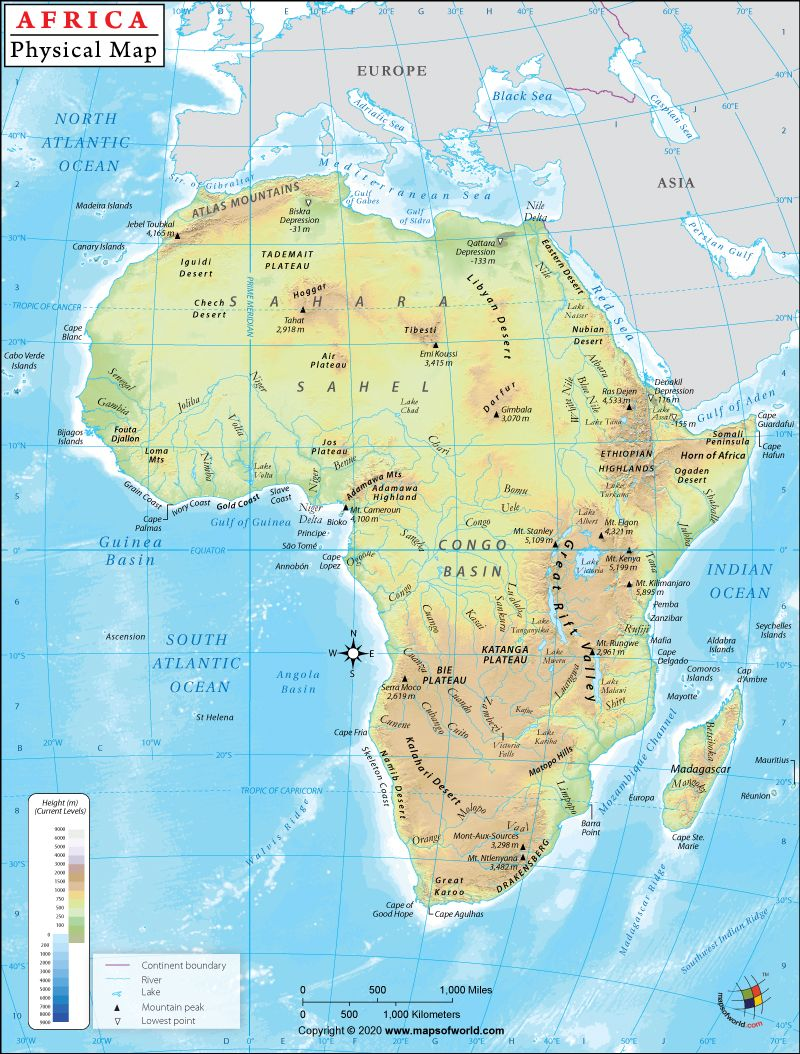Africa Physical Map Physical Map of Africa in 2020 | Physical map, Africa map, Map