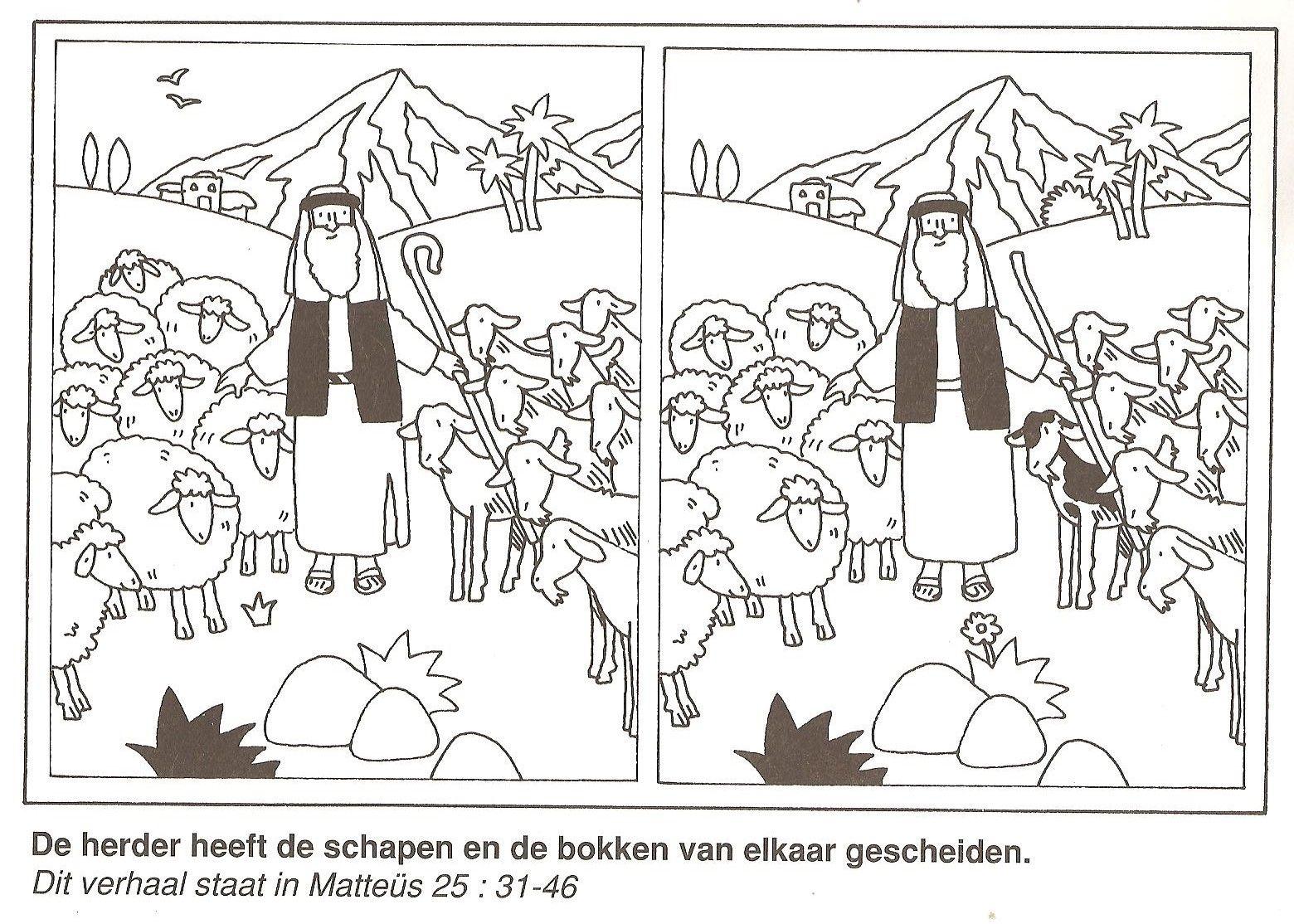 de herder heeft de schapen en de bokken van elkaar gescheiden zoek ...