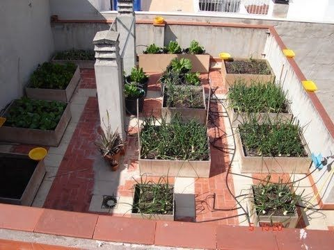 Huerto urbano Macetohuerto Hortalizas en maceta YouTube