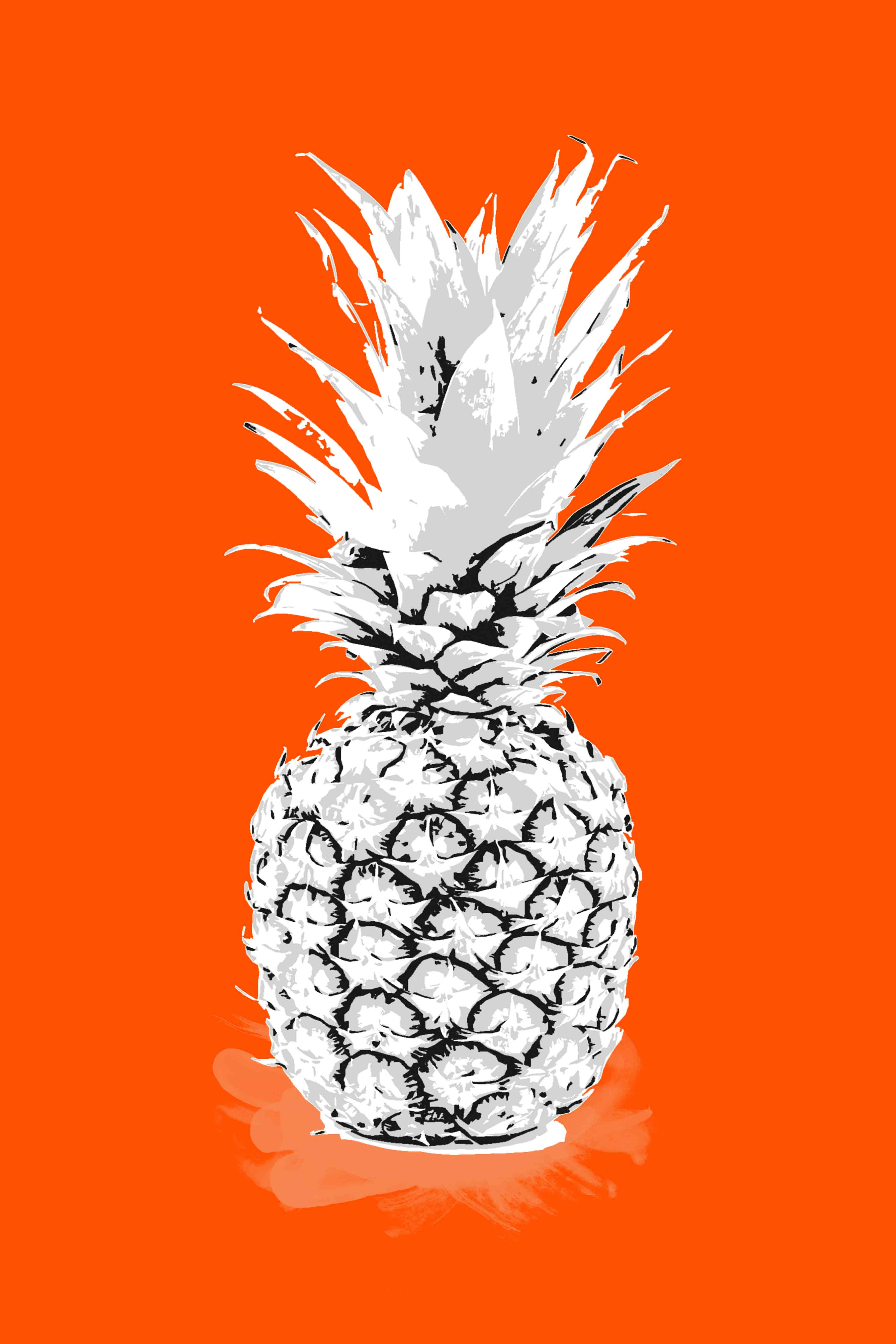 Bright pineapple canvas in orange by Janette Baker.