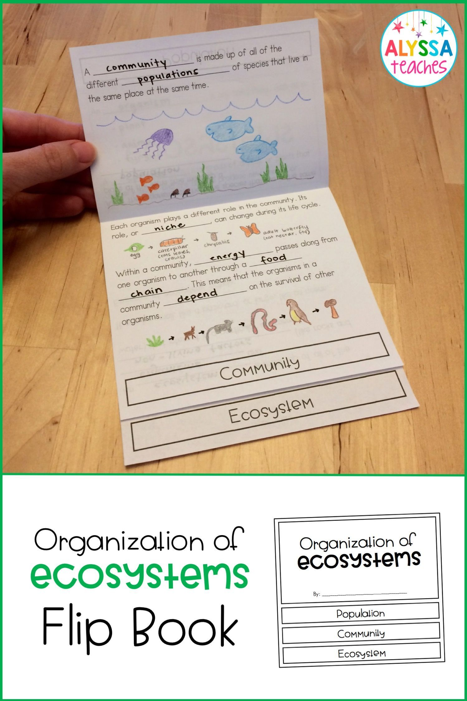 Ecosystem Worksheets 4th Grade Flip Book Interactive Science Notebook Ecosystems