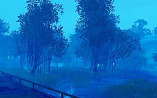 medleymisty:  fireflies and swamp lights