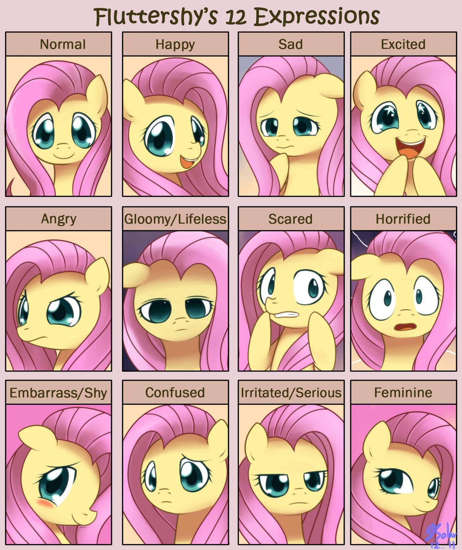 Fluttershy 12 Expressions By Solar Slash On Deviantart My Little Pony Friendship Little Pony My Little Pony
