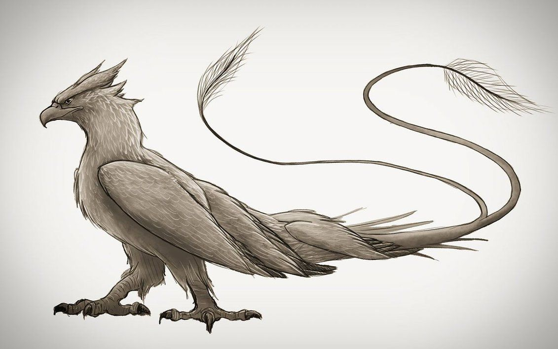 Thunderbird Frank By Spencer Ford C 2017 Fantastic Beasts