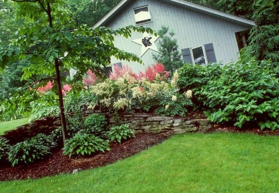 zone 9 landscape ideas - garden
