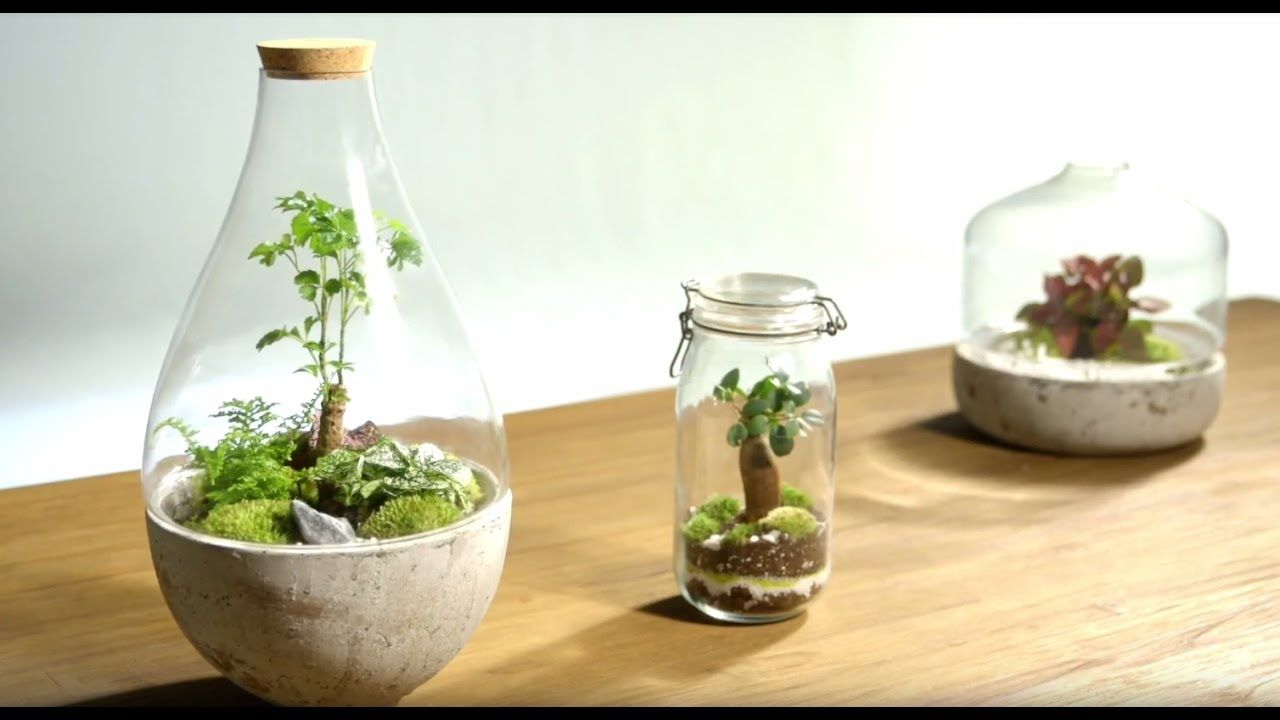 tuto pour r aliser un terrarium dans un bocal en verre en. Black Bedroom Furniture Sets. Home Design Ideas