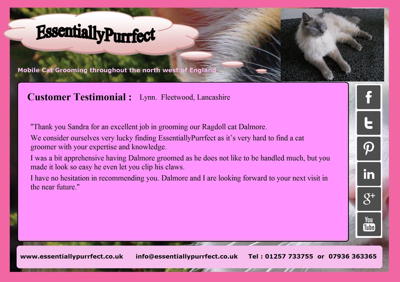 Customer Testimonial of EssentiallyPurrfect #mobile #Ragdoll #cat #catgrooming service. Lynn #Fleetwood #Lancashire