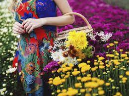 Resultado de imagem para ensaio fotográfico flores
