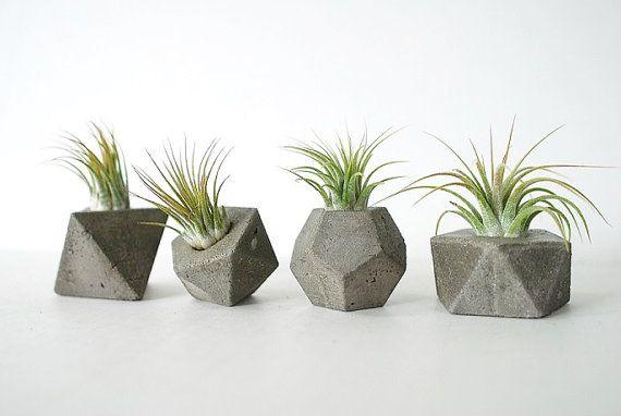 Concrete Gem Party Favors - Set of 4 - Geometric Planters - Eco Friendly - Sacred Geometry
