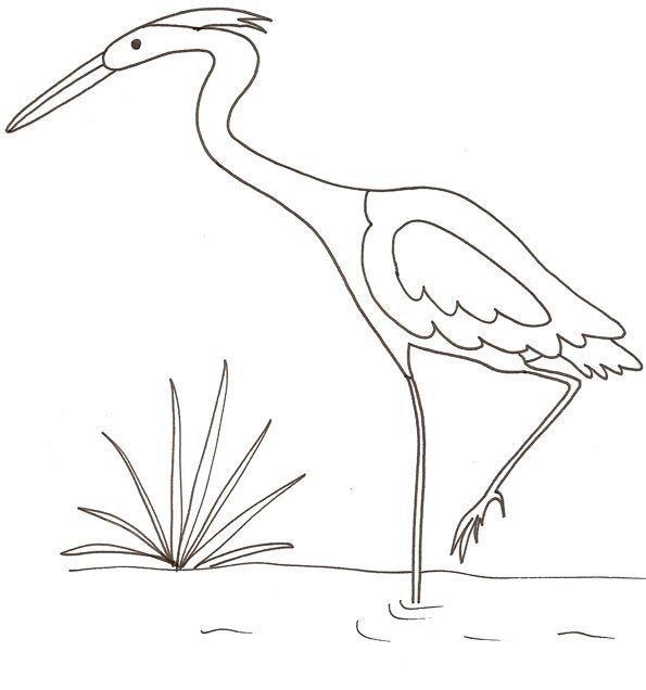 Coloriage Chien Tete A Modeler.Coloriage D Un Heron How To Draw