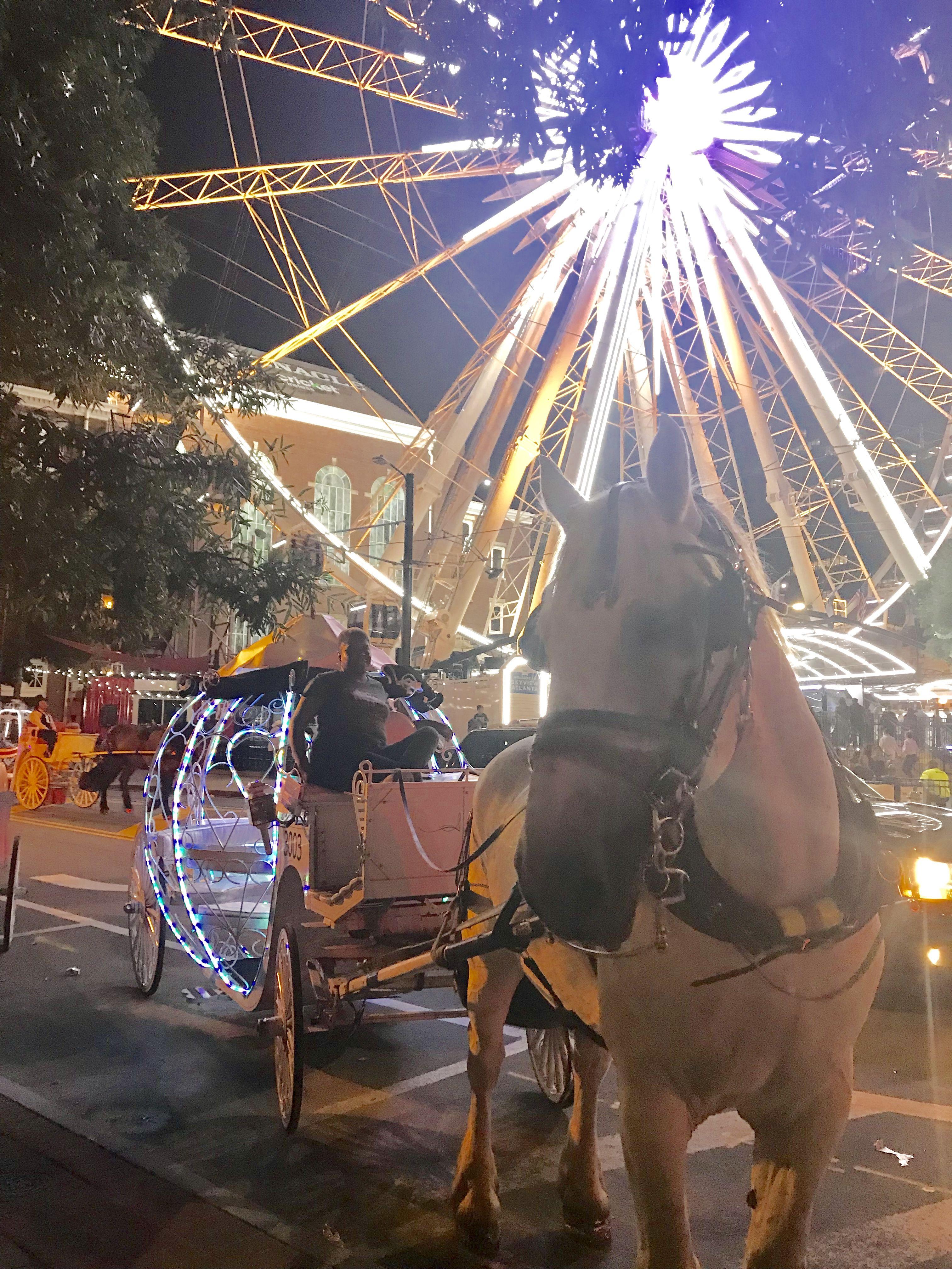 Skyview Ferris Wheel downtown Atlanta horse and