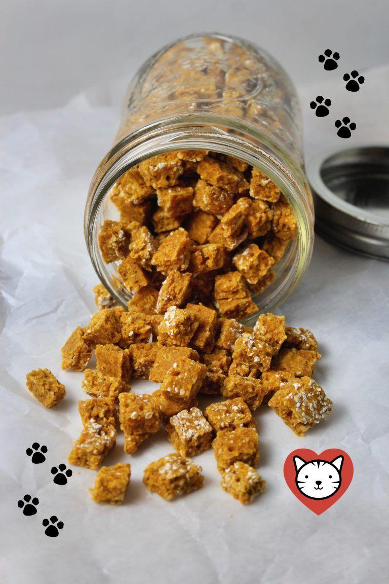 Pumpkin and Salmon Kitty Bits (Cat Treats) Recipe