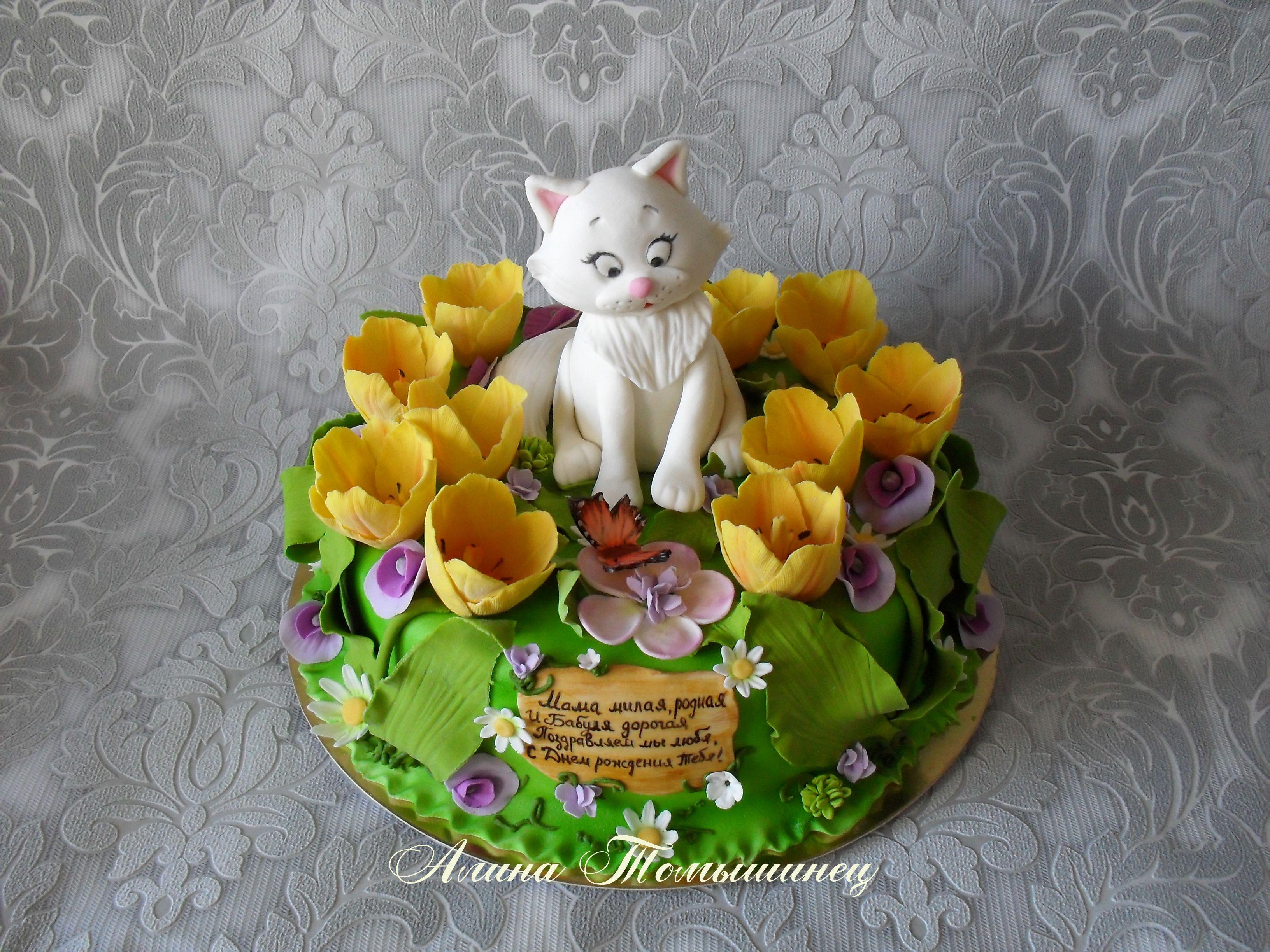 cake cat tulips