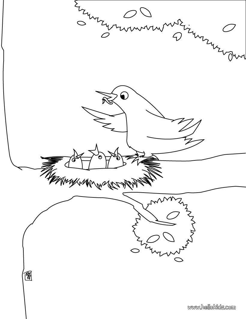 Enjoy this Bird nest coloring page. Nice bird coloring sheet. More ...