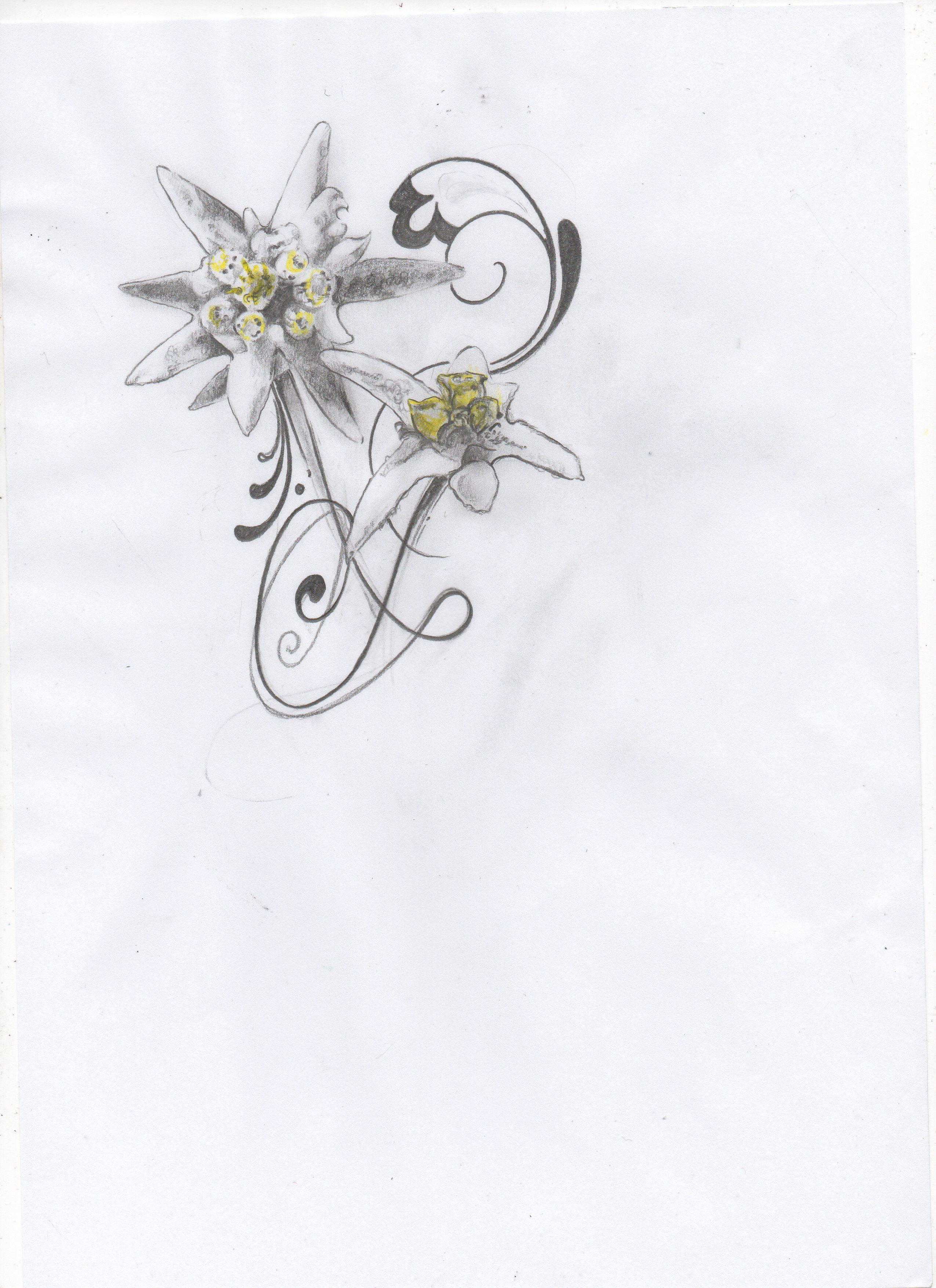 Edelweiss Flower Tattoo Edelweiss tatt | Tattoo inspiration ...