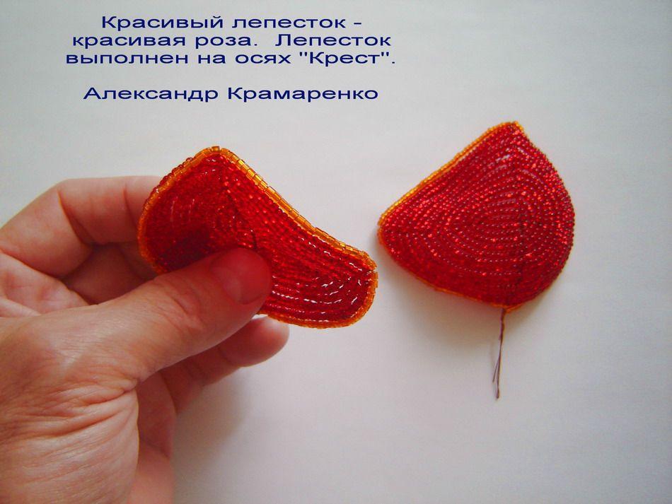 http://star-hobby.net/wp-content/uploads/2011/06/rose_012.jpg