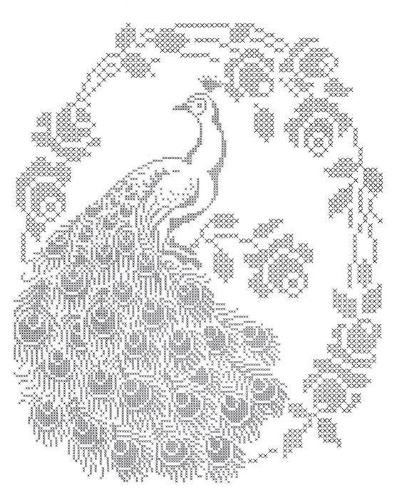 Peacock cross stitch pattern: | Filethäkeln | Pinterest ...