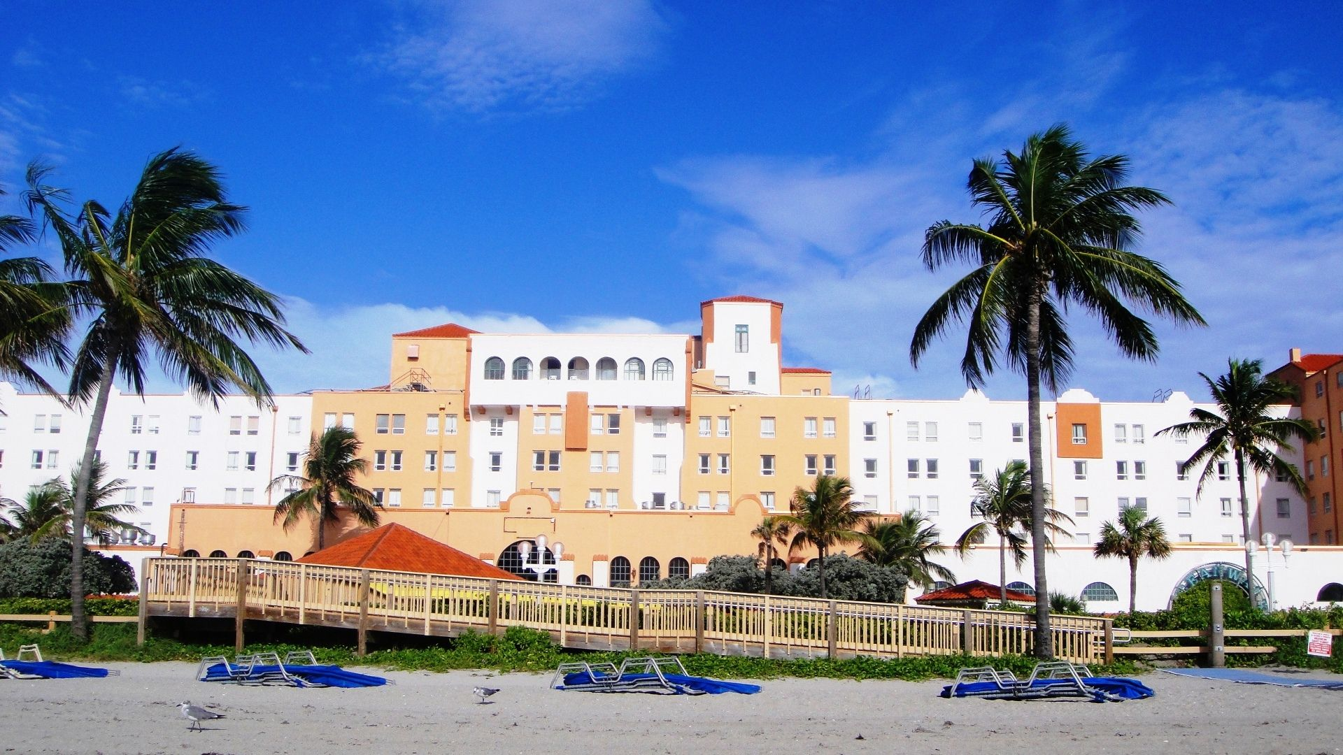 Hollywood Beach Resort Cruise Port Hotel Oceanfront Timeshare Promotion