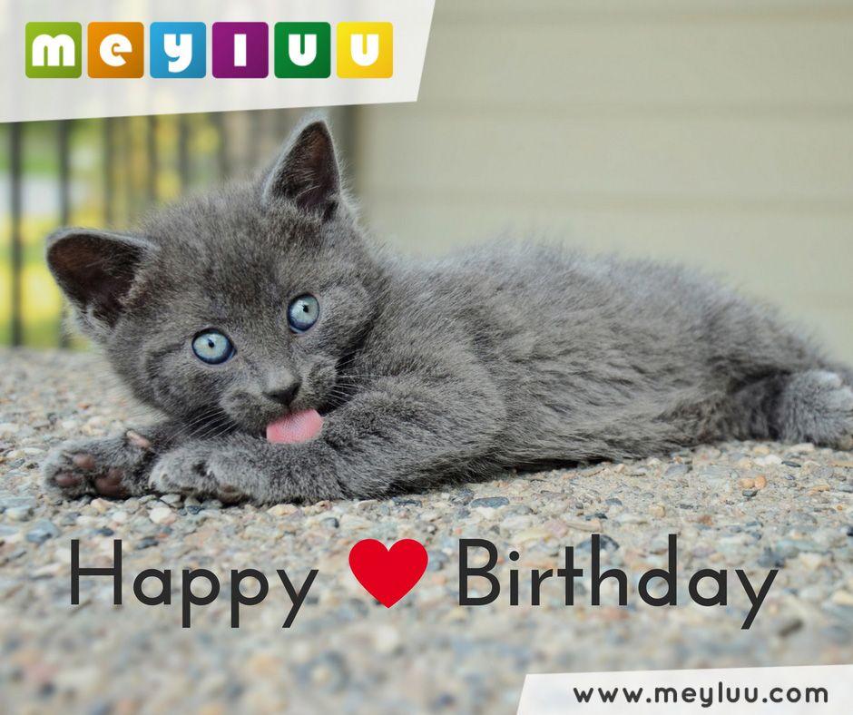 Happy Birthday - tierische Geburtstagsgrüße und Geburtstagswünsche.