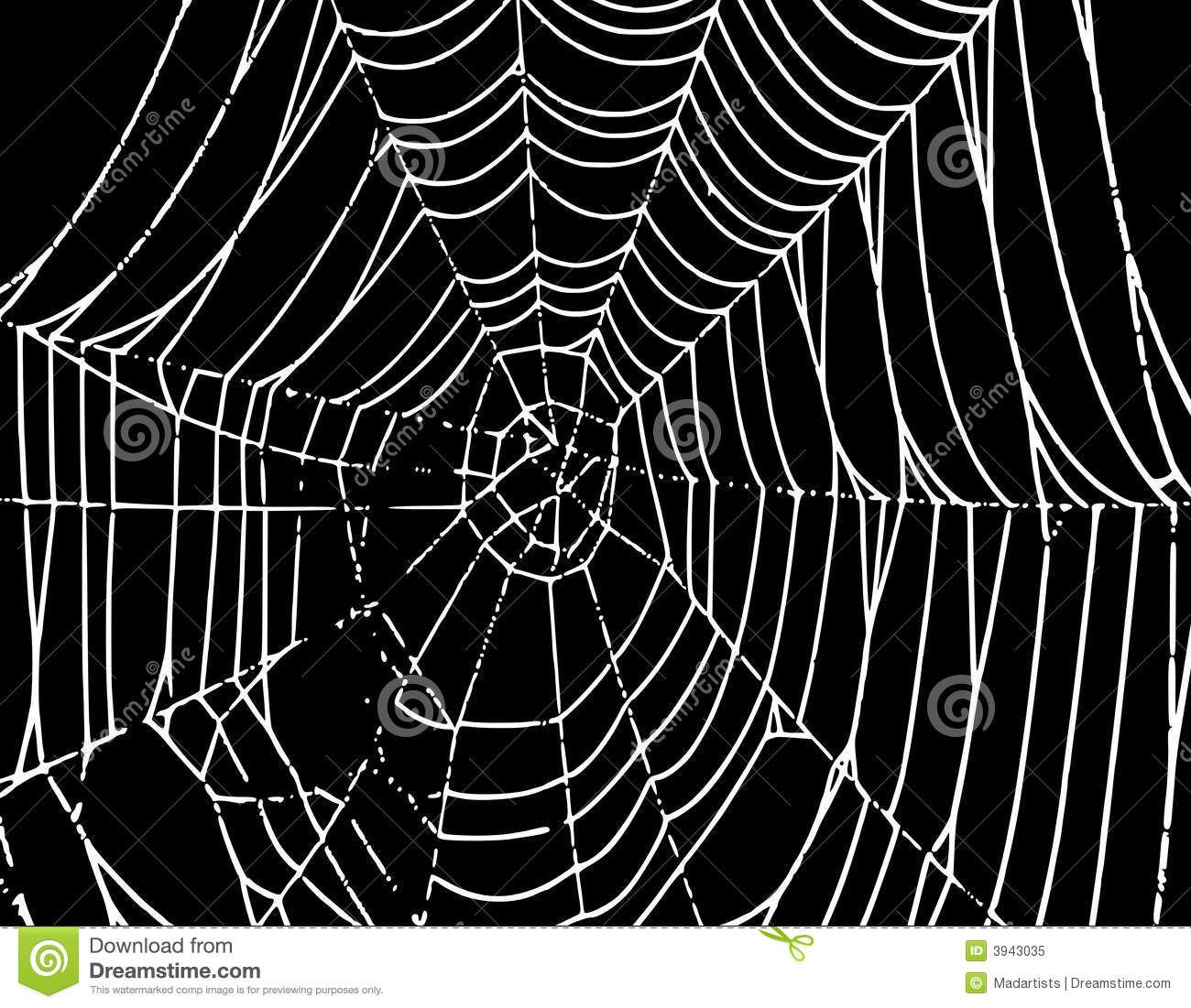 Vector Spider Web Background T Royalty Free Stock Photo Image