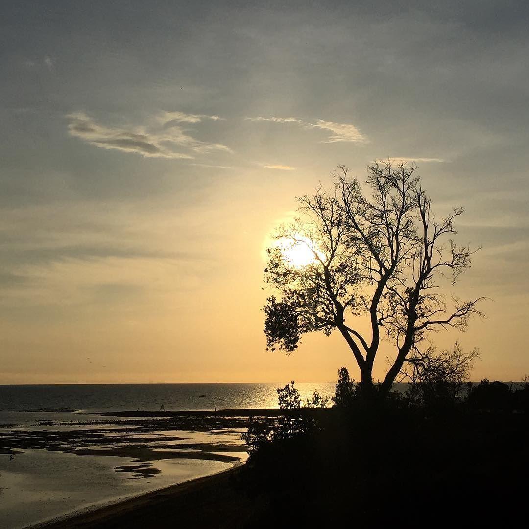 s p l e n d i d  #love_all_sky #clouds_of_our_world #sky_masters #super_photosunsets #splendid_horizon #tree_captures #treeworld #treelife #splendid_woodland #loves_landscape #loves_reflections #water_brilliance #love #wow_australia #liveinvictoria #unlimitedsunsets #myphotography #nothingsordinary #wanderaustralia #australia_shotz #wanderaustralia #loves_united_friends #ig_discover_australia  by fluent_zest