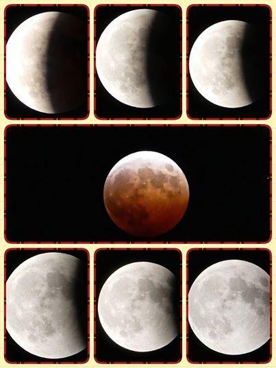 太陽、地球、月が一直線に並ぶときに起こる皆既月食。 全過程が見られたのは約3年ぶりとか(*^^*)  約3時間の素敵な天体ショーでしたね♪  皆さんはどこで誰と見ましたか(^^)?  素敵な思い出になりますように・・・。  和光食材(株) 0234-41-0271 http://www.wako-net.com