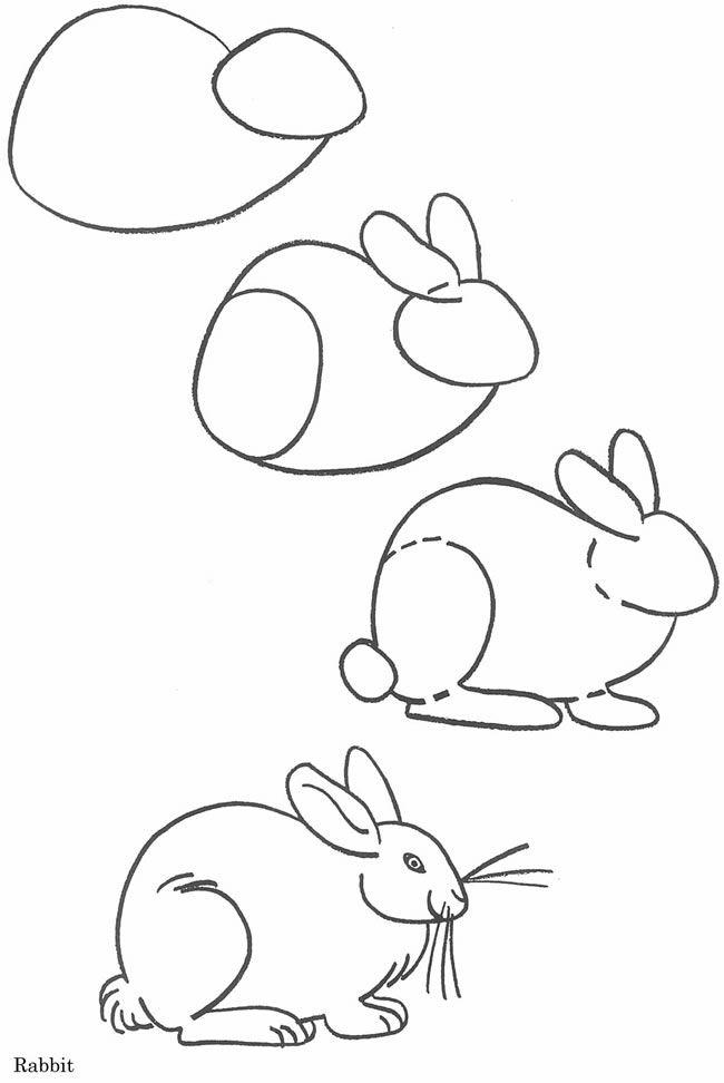Scribble Drawing Animals : Aprende a dibujar fácilmente un conejo easily learn to