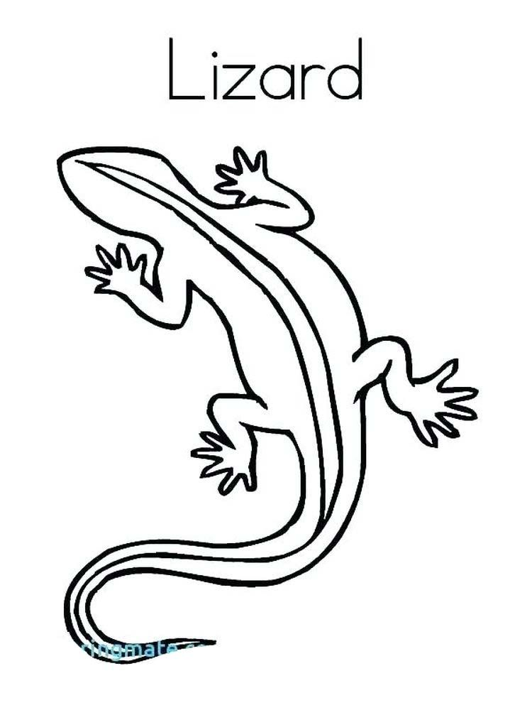 Cute Lizard Coloring Pages Lizards Are Four Legged Scaly Animals That Belong To The Reptile Group Broadly Sp In 2020 Cute Lizard Online Coloring Pages Coloring Pages