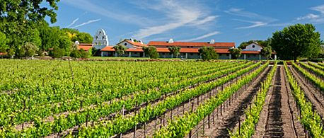 Bridlewood Winery 105 Acre Estate In Santa Ynez With Vineyards Ponds And Even Horses
