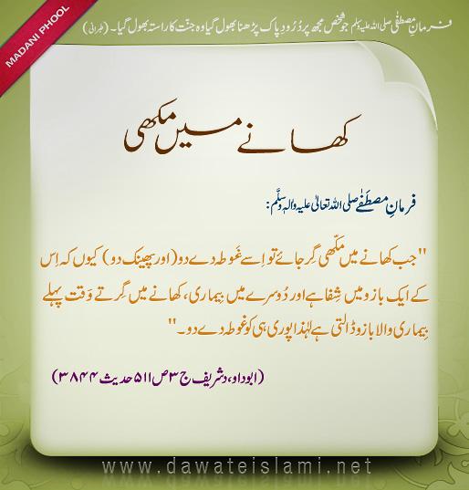 Hazrat muhammad s a w as trader