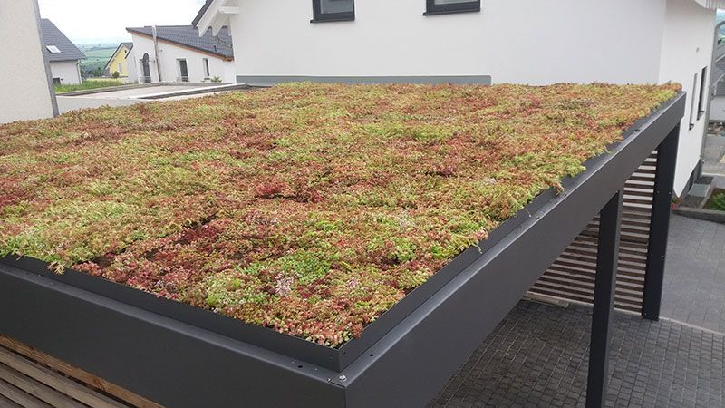 Trapezoidal Sheet Roof Total Green Roof Gardengarageideaspatio Green Roof Sheet Tota In 2020 Dach Gartenhaus Dach Carport Dach