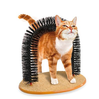 As Seen On Tv The Purrfect Arch Is An All In One Self Groomer And Massager Designed For Your Pet Cat It Helps Remove Pet Cat Toys Cat Brushing Cat Scratcher