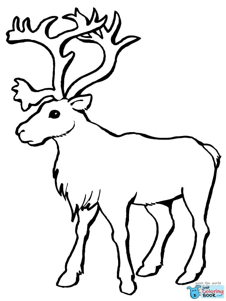 Download Printable Peary Caribou Coloring Pages Colorier