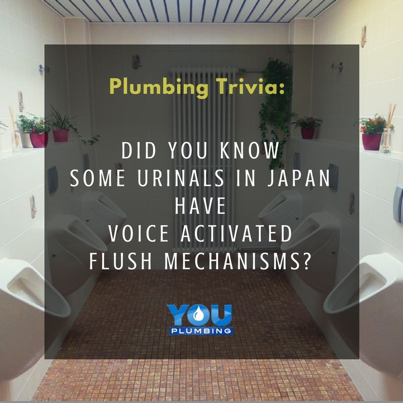 Sydney Plumbers   Urinals, Plumber, Plumbing