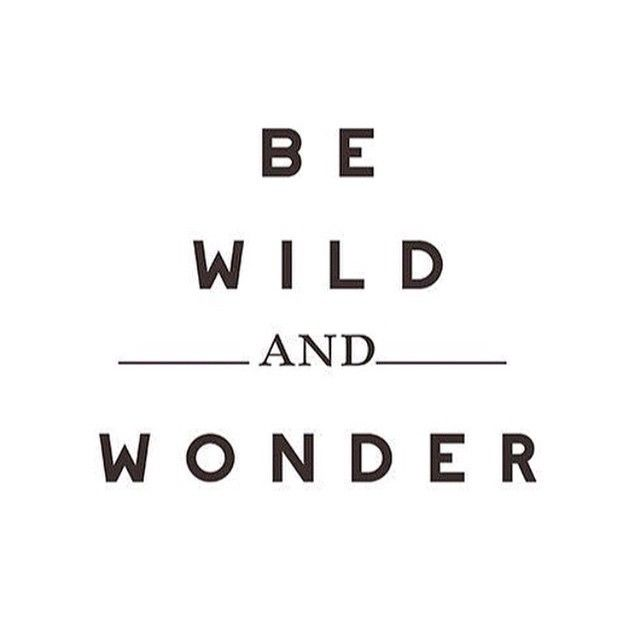 Quotes About Wonder: Quotes, Typography Quotes