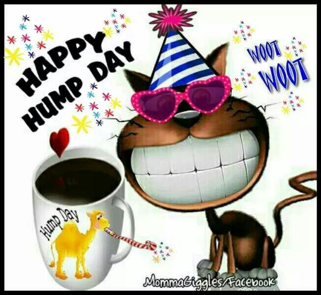 Happy Hump Day | NEW DAY (Wed /Humpday) | Good morning
